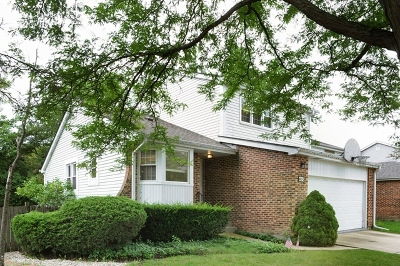 Northbrook Condo/Townhouse For Sale: 622 Dunsten Circle