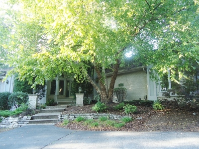 Palos Park Single Family Home For Sale: 6 Partridge Lane