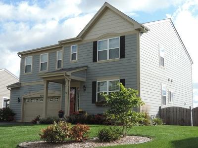 Elgin Single Family Home For Sale: 3149 Kyra Lane