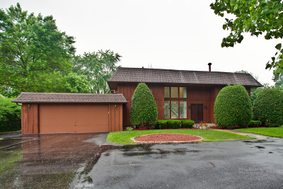 Palatine Single Family Home For Sale: 1127 North Perry Drive