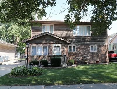 Chicago Ridge  Single Family Home New: 6138 Birmingham Street