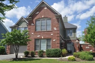 Elgin Rental New: 784 Richwood Avenue