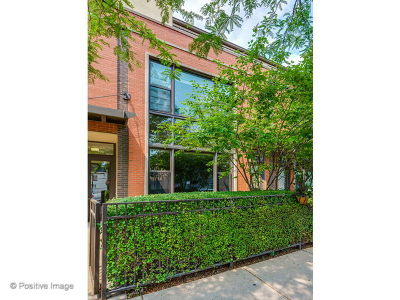 Chicago Condo/Townhouse New: 908 North Larrabee Street