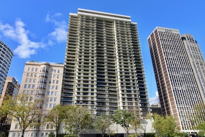 Chicago Condo/Townhouse New: 1212 North Lake Shore Drive #32AS