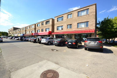 Chicago Condo/Townhouse New: 2802 South Wentworth Avenue #3F
