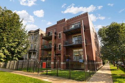 Chicago Condo/Townhouse New: 3241 West Palmer Street #1E