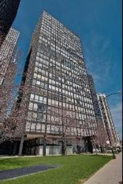 Chicago Condo/Townhouse New: 880 North Lake Shore Drive #7G