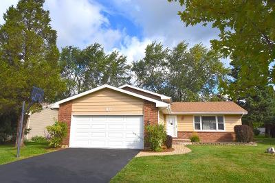 Wheeling Single Family Home New: 102 Mayer Avenue