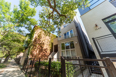 Chicago Condo/Townhouse New: 1351 North Leavitt Street #3