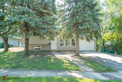 Lockport Single Family Home New: 1003 Highland Avenue