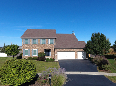 Minooka, Channahon Single Family Home New: 26318 West Silver Stream Drive