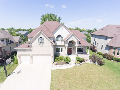 Naperville Single Family Home New: 3203 Landore Drive