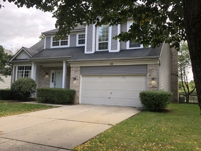 Du Page County Single Family Home New: 115 North Windham Lane