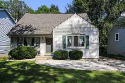 Glen Ellyn Single Family Home New: 358 Center Street