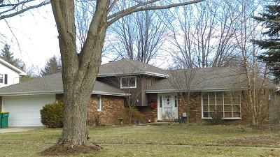 Plainfield Single Family Home New: 15243 South Meadow Lane