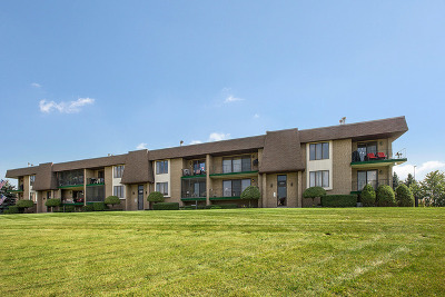 Orland Park Condo/Townhouse New: 15724 Old Orchard Court #1E