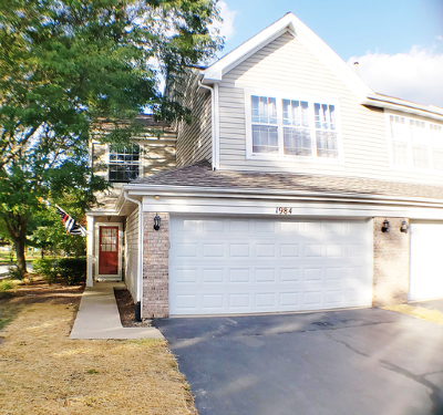 Naperville Condo/Townhouse New: 1984 Town Drive #1984