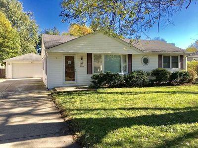 Palatine Single Family Home New: 431 South Warren Avenue