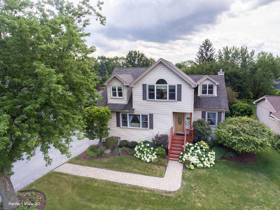 Darien Single Family Home For Sale: 221 Holly Avenue