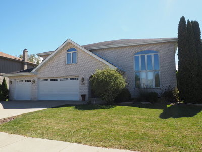 Will County Single Family Home New: 1237 Tralee Lane