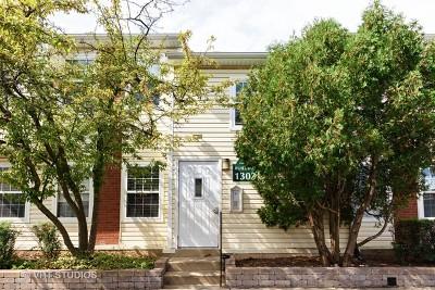 Palatine Condo/Townhouse New: 1303 Wyndham Drive #201