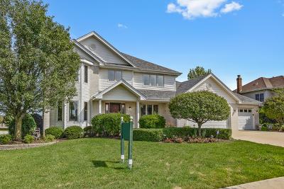 New Lenox Single Family Home New: 736 Bluestone Bay Drive