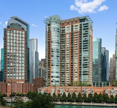 Chicago Condo/Townhouse New: 415 East North Water Street #1206