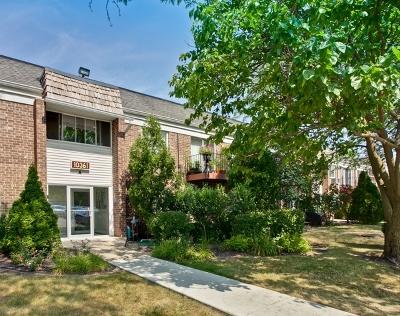 Condo/Townhouse New: 10361 Dearlove Road #2G
