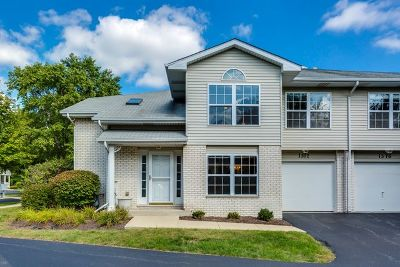 Naperville Single Family Home New: 1312 Sugar Court