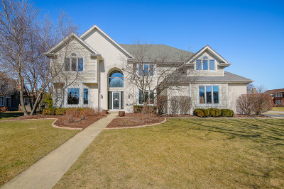 Naperville Single Family Home New: 1119 Conan Doyle Road