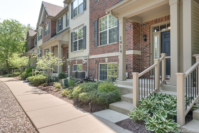 Lombard Condo/Townhouse For Sale: 1414 South Fairfield Avenue