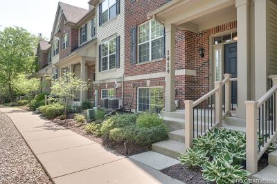 Lombard Condo/Townhouse New: 1414 South Fairfield Avenue