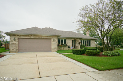 Mokena Single Family Home For Sale: 10130 Becket Court