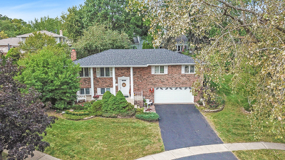 Lemont Single Family Home For Sale: 419 Hillview Court
