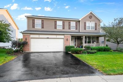 South Elgin Single Family Home For Sale: 619 Oakwood Lane