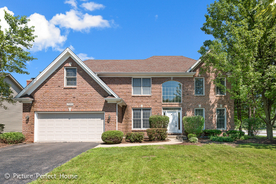 Naperville Single Family Home New: 2203 Fox Boro Lane