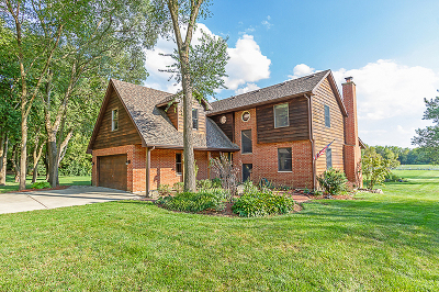 Schaumburg Single Family Home For Sale: 121 Long Avenue