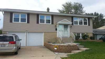 Hoffman Estates Single Family Home New: 865 Heather Lane