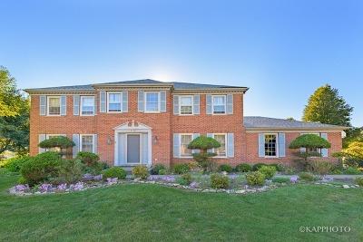 Hoffman Estates Single Family Home New: 4978 Thornbark Drive