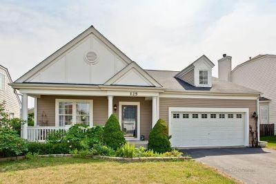 Round Lake Single Family Home For Sale: 125 West Newbridge Lane
