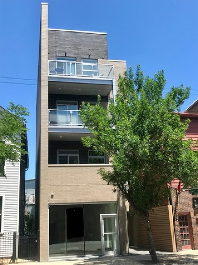 Chicago Condo/Townhouse New: 2918 North Lakewood Avenue #2