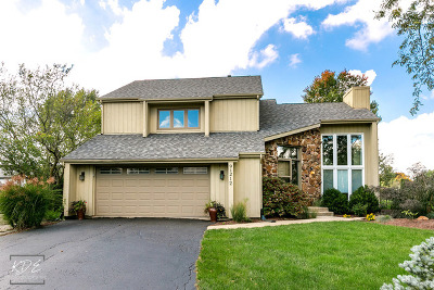 Naperville Single Family Home New: 9s212 Chandelle Drive