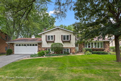 Naperville Single Family Home New: 921 East Hillside Road