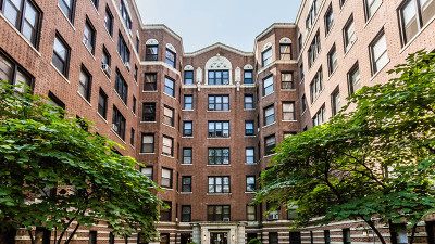 Cook County Condo/Townhouse New: 725 West Sheridan Road #204