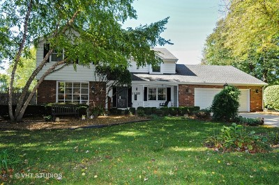 Naperville Single Family Home New: 5s220 Eagle Street