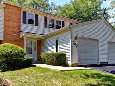 Bolingbrook Condo/Townhouse New: 507 Dubois Circle