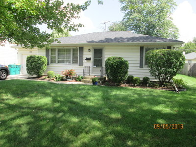 Joliet Single Family Home New: 1102 Alann Drive