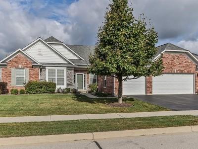 Elgin IL Single Family Home New: $409,500