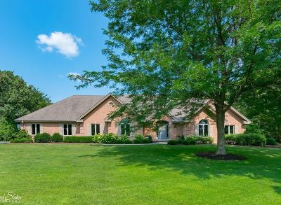Mc Henry County Single Family Home For Sale: 2008 Barreville Road