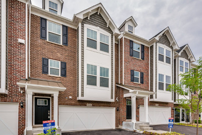 Naperville Condo/Townhouse New: 944 Coletta Circle